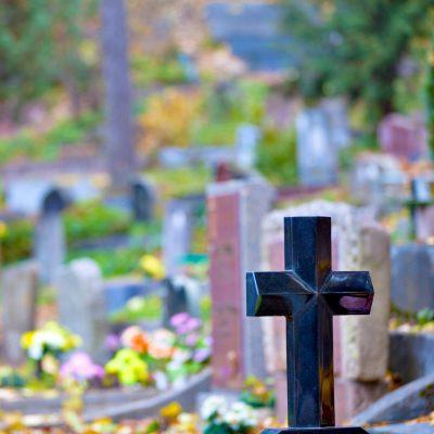 Originales Mensajes De Condolencias Gratis Cabinasnet