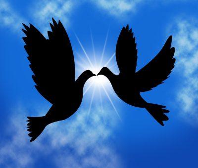 Buscar Mensajes De Paz Y Amor Cabinasnet
