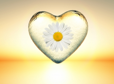 Buscar Mensajes De Buenos Días Para Tu Pareja│Nuevas Frases De Buenos Días Para Mi Amor