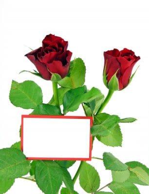 Bajar Mensajes De Amor Para Tu Pareja | Frases Romànticas Para Compartir